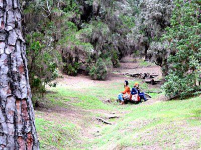 Posando con los nuevos bolsos de Farobag en un claro del bosque de La Esperanza