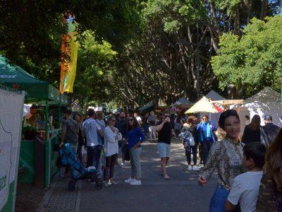 Mercadillo en el parque García Sanabria